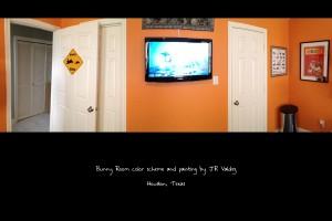 Bunny Room 9-2013 Back